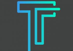 Tempo_SecondaryLogo_Color-01